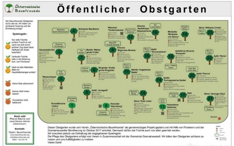 Ein Obstgarten für alle Mitterndorfer/-Innen h